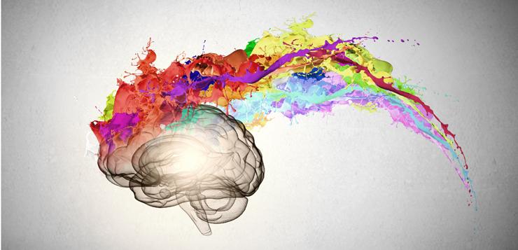 Le quattro fasi di un cervello creativo