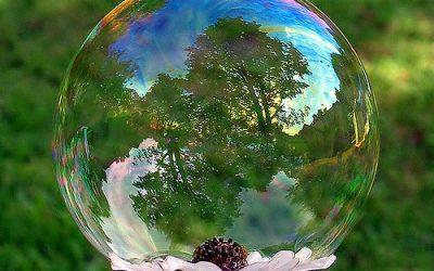 Entro nella bolla o apro la mente?