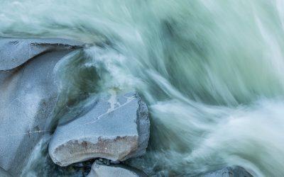 Il canto dell'acqua dolce