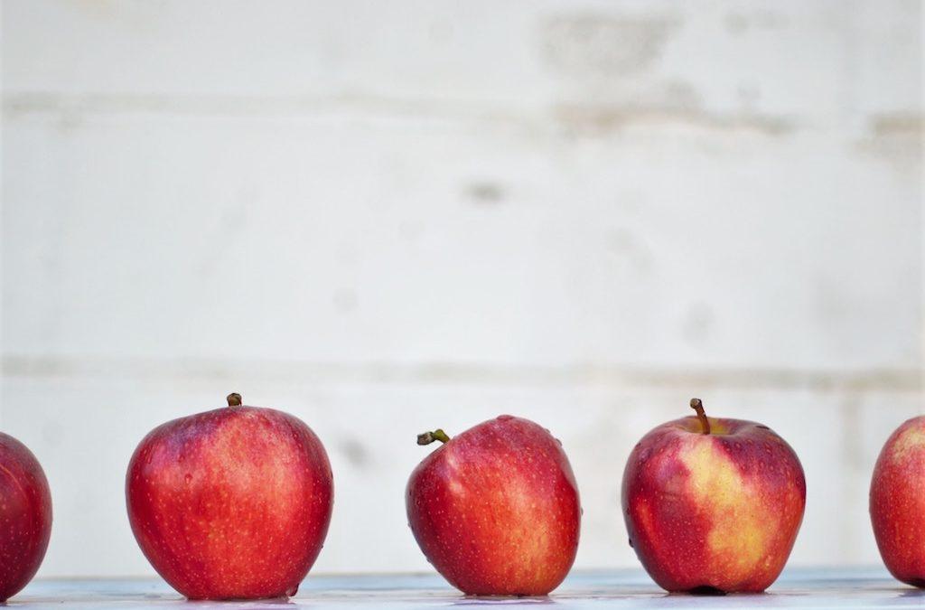 La prima e l'ultima mela del mondo
