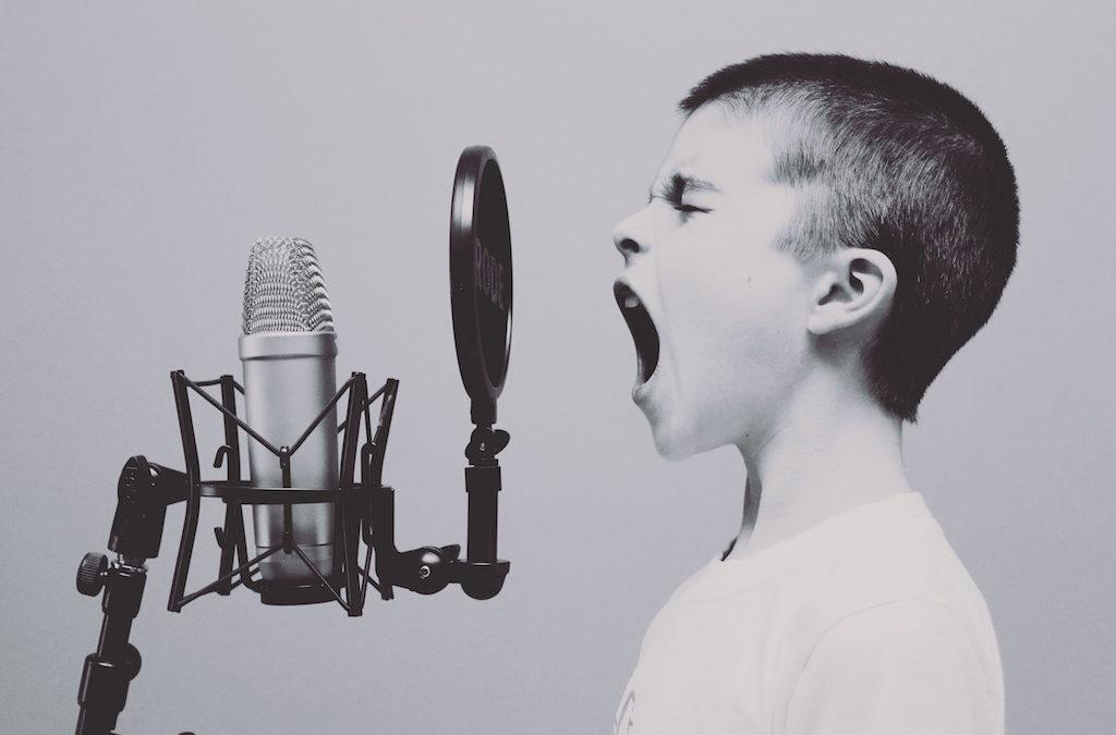 La voce autocritica
