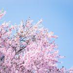 Sotto il cielo d'aprile