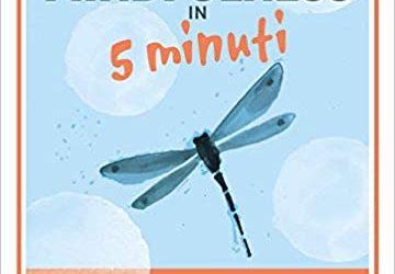 Una recensione di Mindfulness in 5 minuti
