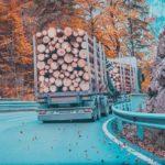 Sul perché i camionisti che trasportano legname si alzano prima degli studenti zen