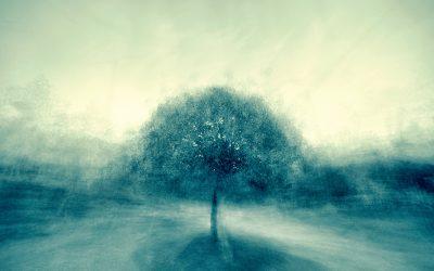 Movimenti Mindful: svegliare il corpo