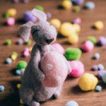 Il coniglietto di velluto